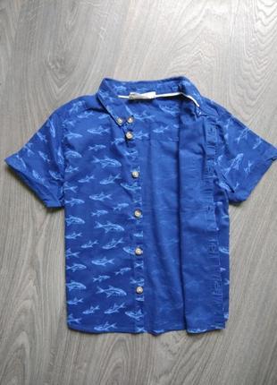 110р h&m тэниска рубашка футболка3 фото
