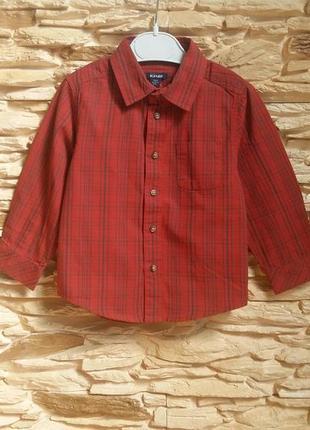 Рубашка kiabi (франция) на 18-24 месяца (размер 83-89)