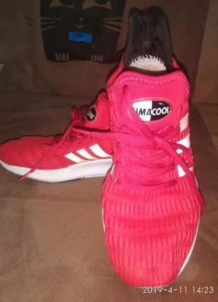 Adidas кроссовки кеды