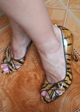 Лаковые кожаные туфли лодочки в анималистичный принт тигровый леопардовый4 фото