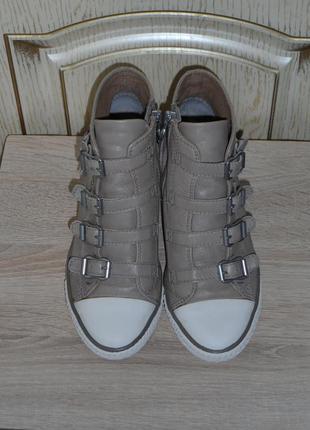Кожаные ботинки кеды, сникерсы на танкетке, ash limited (италия), 36р., 23,5см.