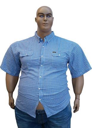 Wrangler мужские рубашки больших размеров