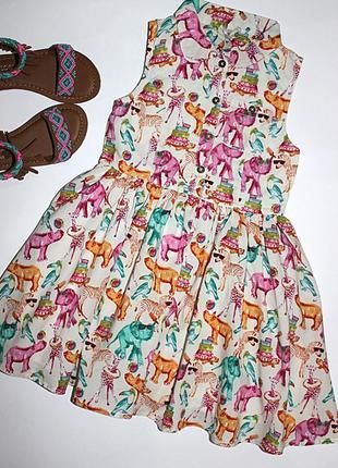 Хлопковое платье next р.98, 3 года