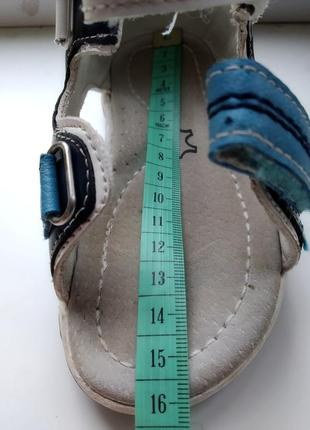 Кожаные сандалии apawwa 24р.6 фото