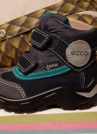 201ca547a69ae4 Обувь экко (Ecco) для мальчиков, детская 2019 - купить недорого ...
