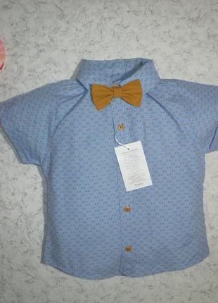 Голубая рубашка с коротким рукавом, бабочка в комплекте, турция