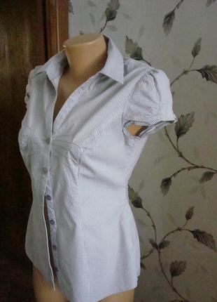 Блуза рубашка кофточка