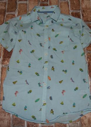 Хлопковая рубашка тениска 12 лет