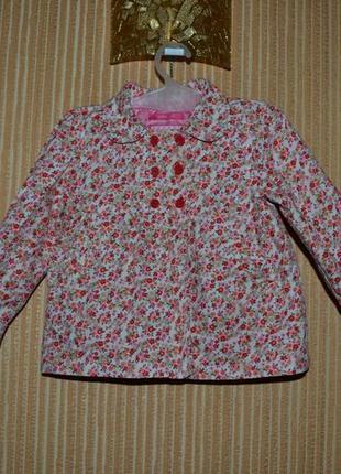 92 hema. курточка деми, ветровка для девочки.