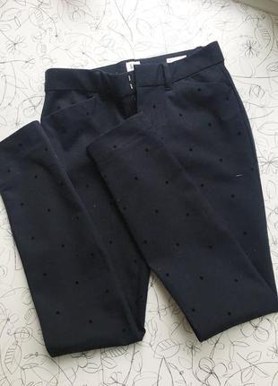 Синие брюки в горошек1