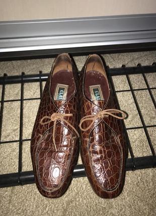 Туфли кожа2