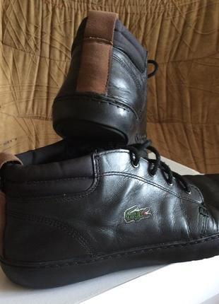 Lacoste кроссовки,хайтопы