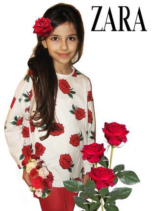 Регланы zara для девочек р. 134-140