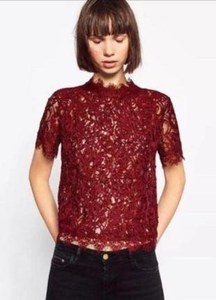 Шикарная кружевная блуза топ с молнией на спине1