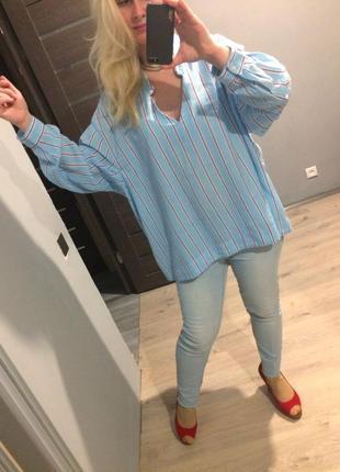 Голубая прямая хлопковая блуза в полоску р.242