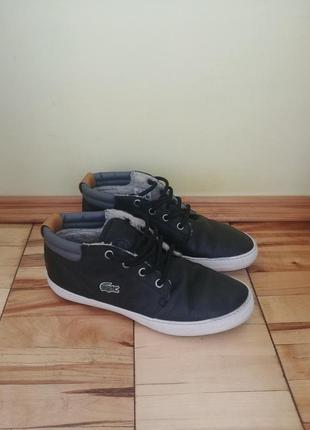 Кожаные кроссовки /кеды lacoste1