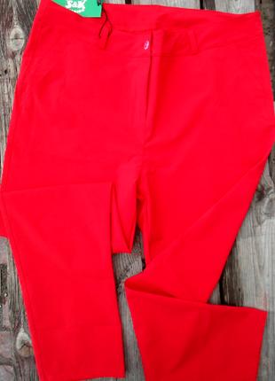 Укороченные повседневные брюки леггинсы безупречная посадка с42по58р-14 цветов2