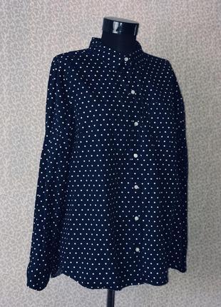 Классная котоновая рубашка в горох от gap5 фото