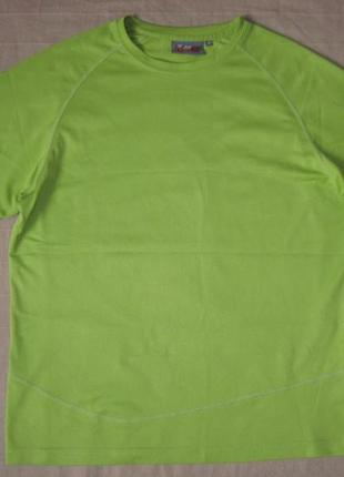 Big bear (m) спортивная футболка мужская