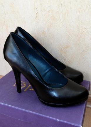 Базовые туфли от graceland