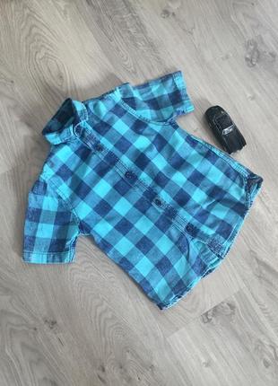 Рубашка для мальчика с коротким рукавом от next