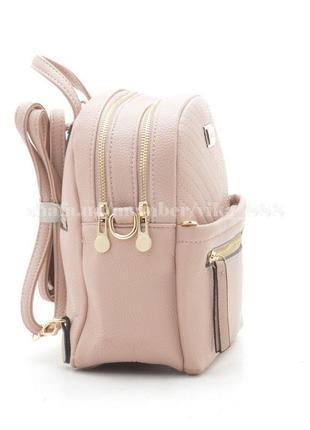 Рюкзак в городском стиле на два отделения 169 розовый2 фото