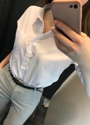 Рубашка блузка из хлопка ostin4 фото