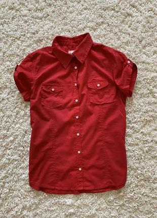 Рубашка, блуза н&m, хлопок
