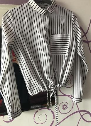 Рубашка блуза полоска на зав'язку2 фото