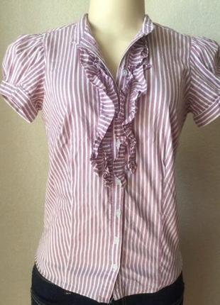 Женская розовая блуза рубашка