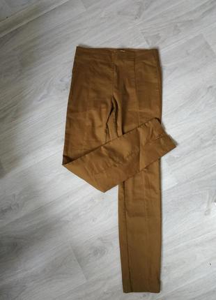 Женские брюки,классические брюки,брюки