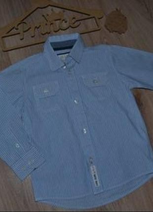 Рубашка стиляге coolclub р104