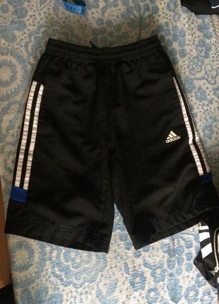 Adidas шорты для мальчика