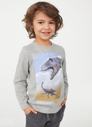 Реглан h&m с динозаврами 2-4 года