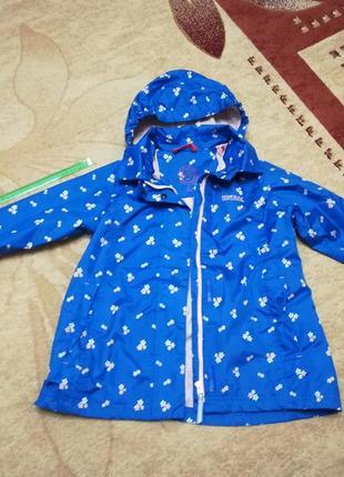 Демисезонная куртка плащ для вашей принцессы