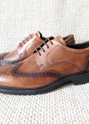 Туфлі броги шкіряні оригінал ecco lisbon 622164 розмір 44