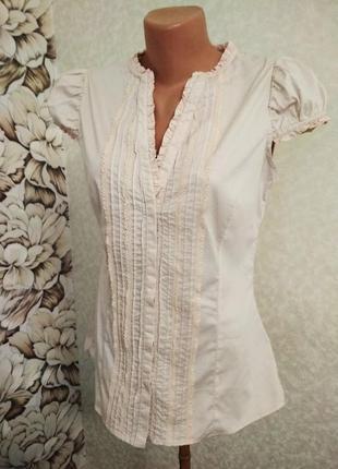 Блуза цвета пудры, хлопок. 1+1= 50% скидки на 3ю вещь.