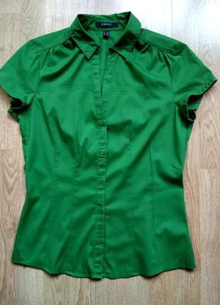 Идеальная рубашка esprit, р.36
