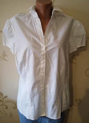F&f . белая хлопковая блузка короткий рукав . новая . большой размер