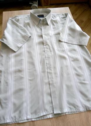 Рубашка pharaon