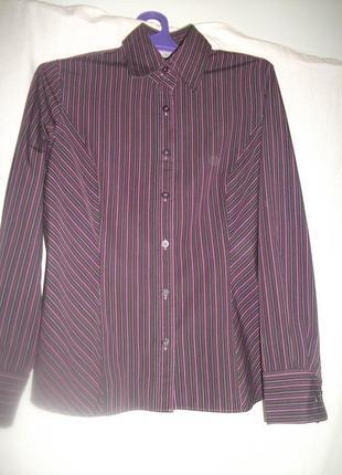 Рубашка бордовая в полоски