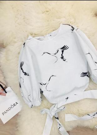 Эксклюзивный топ блузка рубашка zara принт аист4 фото