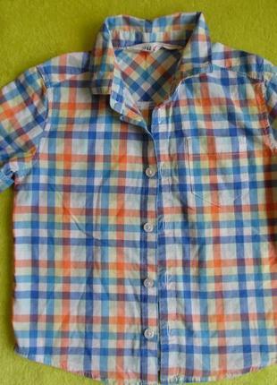 Шведка рубашка h&m 2-3 годика в клетку клеточка