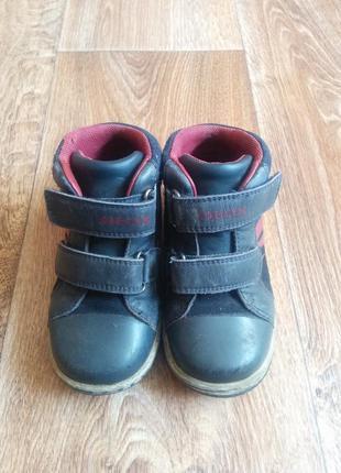 Кожаные ботиночки geox 16 см