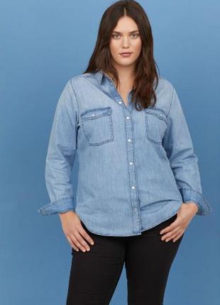 Большой выбор блуз рубашек / джинсовая рубашка