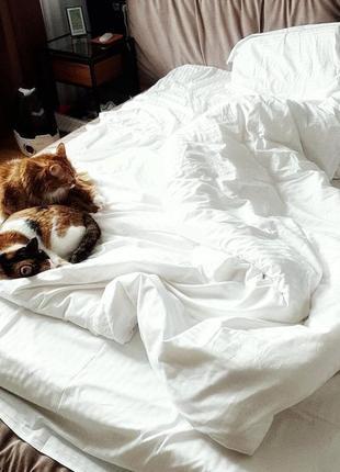 Комплект постельного белья, созданный из белого страйп-сатина № 10-1011 фото
