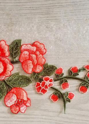Красивая нашивка цветы 🌹 розы разные цвета