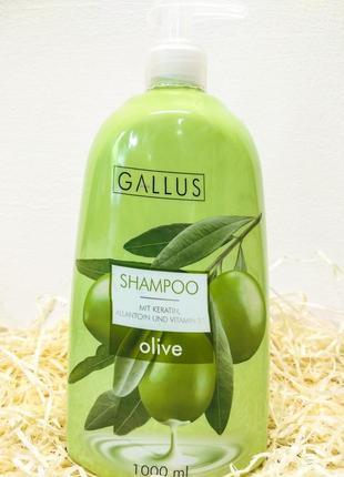 Шампунь gallus oliva mit keratin, allantoin, vitamin b3. 1 литр