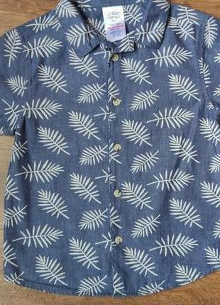 Новая рубашка короткий рукав urban rascals на 5 лет рост 110 см