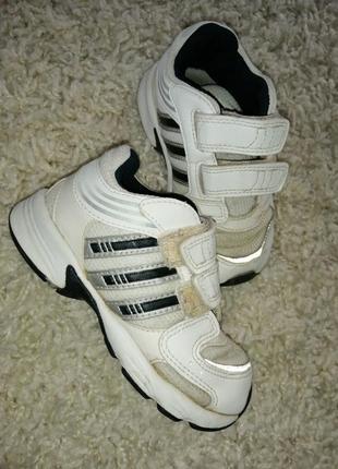 Кросівки adiddas